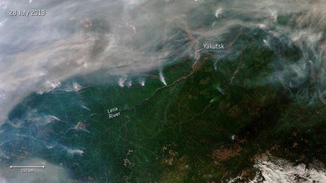 Ponad trzy miliony hektarów lasów w ogniu. <br />Pożar widać na zdjęciach satelitarnych