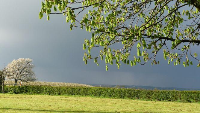 Pogoda na dziś: burze, a miejscami upał