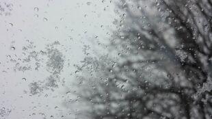 Prognoza pogody na jutro: zimno i pochmurno. Miejscami śnieg