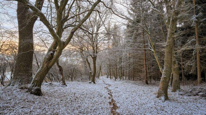 Pogoda na dziś: dużo słońca, ale i opady śniegu