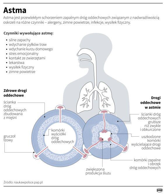 Astma (Adam Ziemienowicz/Maria Samczuk/PAP)