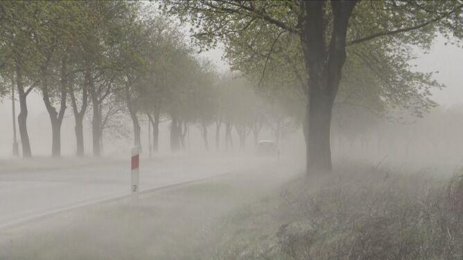 """Burze pyłowe nad Polską. """"Możemy się ich spodziewać coraz częściej"""""""