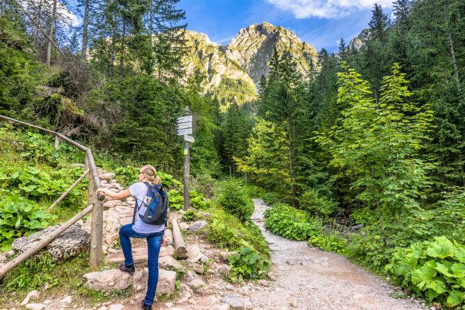 Kolory szlaków górskich - co oznaczają?