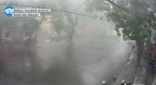 Wiatr w Wietnamie przewracał drzewa
