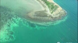 Wielka Rafa Koralowa blaknie i jest to spowodowane globalnym ociepleniem