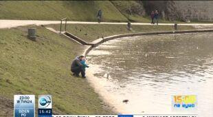 Wiosna powoli wygrywa z zimą (TVN24)
